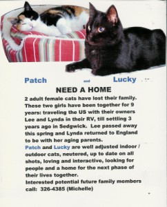 patch_and_lucky