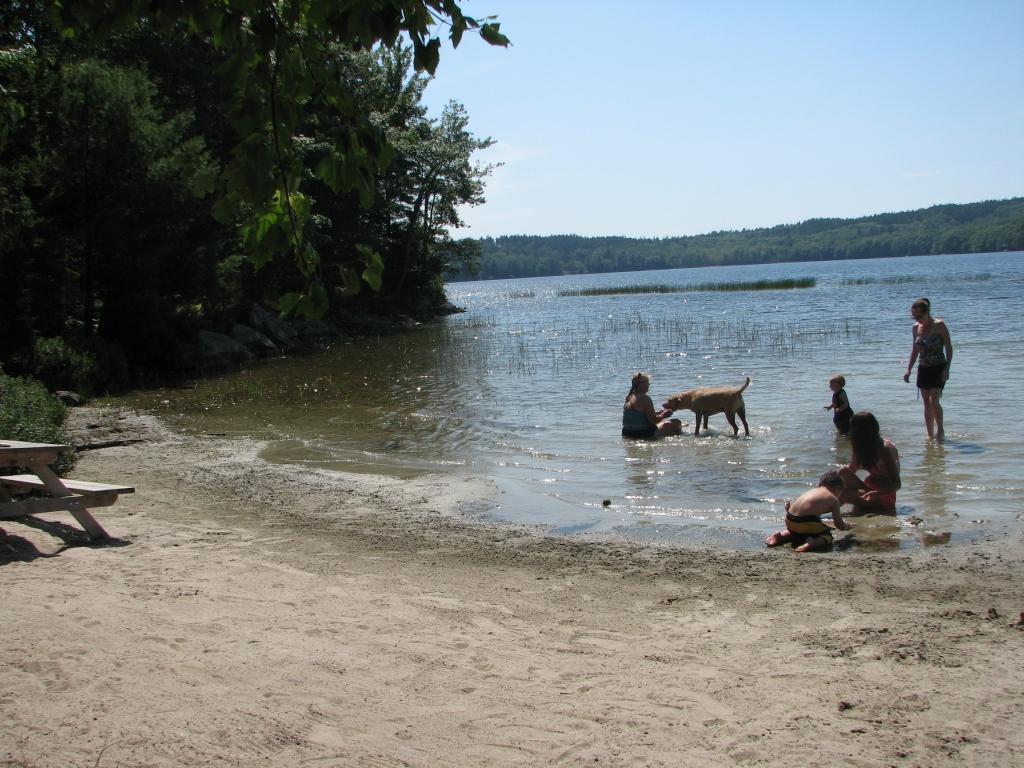 Walker Pond Swimming Beach